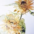 Sunflowers II Uncropped by Monique Faella