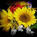 Sunflowers by Lori Seaman