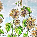 Sunflowers by Monique Faella