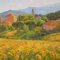 Sunflowers Of Tuscany by Bunny Oliver