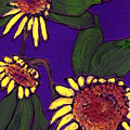 Sunflowers On Purple by Wayne Potrafka
