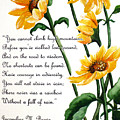 Sunflowers  Poem by Karin  Dawn Kelshall- Best