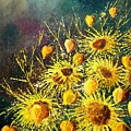 Sunflowers by Pol Ledent