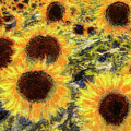 Sunflowers Summer Van Gogh by David Pyatt