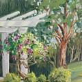 Sunken Garden by Cathleen Larson