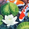 Sunken Garden by Jim Bob Swafford