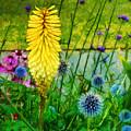 Sunlight At Kew Gardens by Judi Bagwell