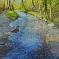 Sunlight In The Glen by Eamon Doyle