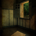 Sunlight Onto The Floor  by Valmir Ribeiro