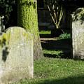 Sunlit Churchyard by Ann Horn
