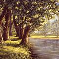 Sunlit Riverbank by Grace Nikander