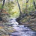 Sunlit Stream by Penny Neimiller