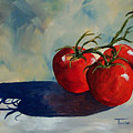 Sunlit Tomatoes  by Torrie Smiley