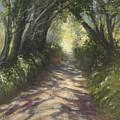 Sunlit by Valerie Travers