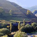 Sunlit Valley  by Elizabetha Fox
