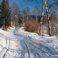 Sunlit Winter Landscape by Peder Mork Monsted