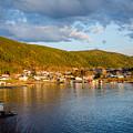 Sunny Bay by Lisa Killins