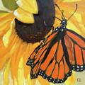 Sunny Butterfly by Carol Stickley