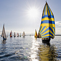 Sunny Day Sailing by Tom Dowd
