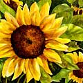 Sunny Floral by Karen Ann