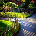 Sunny Garden Path by Carol Groenen