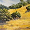 Sunny Hills by Maralyn Miller