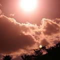 sunny Moon by Florene Welebny