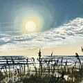 Sunny Morning On Crescent Beach by Caroline Conkin