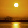 Sunny Skies by Joe Geraci