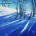 Sunny Traintrip To Hamar by Lin Petershagen