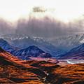sunny valley in Denali by Jeff Folger