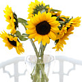 Sunny Vase Of Sunflowers by Marilyn Hunt