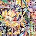 Sunnyflowers by Beena Samuel