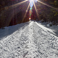 Sunrays And Snow by James BO Insogna