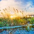 Sunrays On The Beach by Debra and Dave Vanderlaan