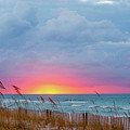 Sunrise by Anita Duff