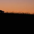 Sunrise At Big Meadows by Brian M Lumley