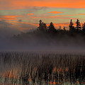 Sunrise At Connery Pond 1 by Tony Beaver