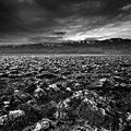 Sunrise At Devil's Golf Course, Death Valley, Deat by David Kiene