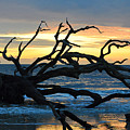 Sunrise At Driftwood Beach 1.1 by Bruce Gourley