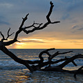 Sunrise At Driftwood Beach 1.2 by Bruce Gourley