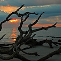 Sunrise At Driftwood Beach 2.2 by Bruce Gourley