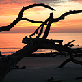 Sunrise At Driftwood Beach 3.1 by Bruce Gourley