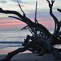 Sunrise At Driftwood Beach 5.1 by Bruce Gourley