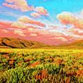 Sunrise At Montana De Oro by Dominic Piperata