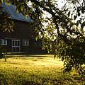 Sunrise At The Barn by Sara Stevenson