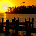 Sunrise At The Boat Launch  by Allen Williamson