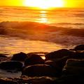 Sunrise At The Jetty by Carol McGinn