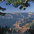 Sunrise At The North Rim by Sandra Bronstein