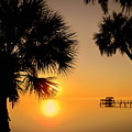 Sunrise At The Space Coast Fl by Susanne Van Hulst